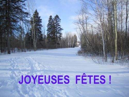 neige,noël 2015,église st-jacques,arvida