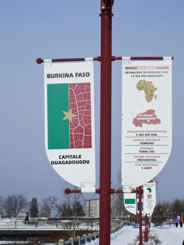 Jonquière en neige, Burkina Faso