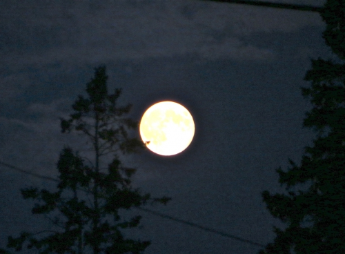 lune,super lune,août 2014