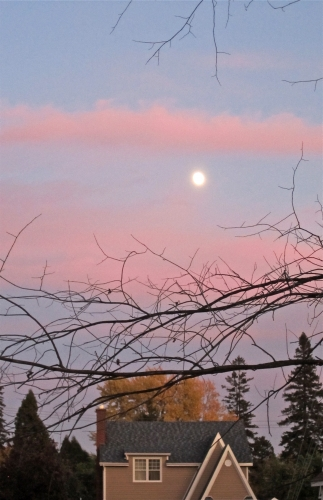 Lune, ciel rose, nuages, soir, arvida