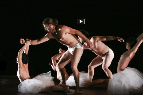danse contemporaine, compagnie Virginie Brunelle, complexe des genres