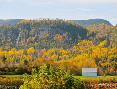 l'anse-saint-jean,paysages,automne,villages en couleurs,grange blanche